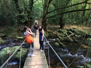 ponte_trilha_cachoeira_gato_ilhabela